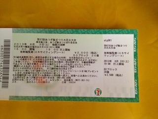 厚木花火大会有料チケット