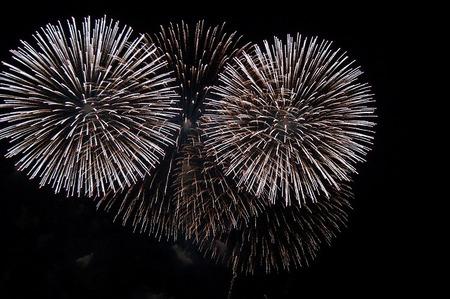 2018年 寒川花火大会「夜空にひびけ 寒川みんなの花火」